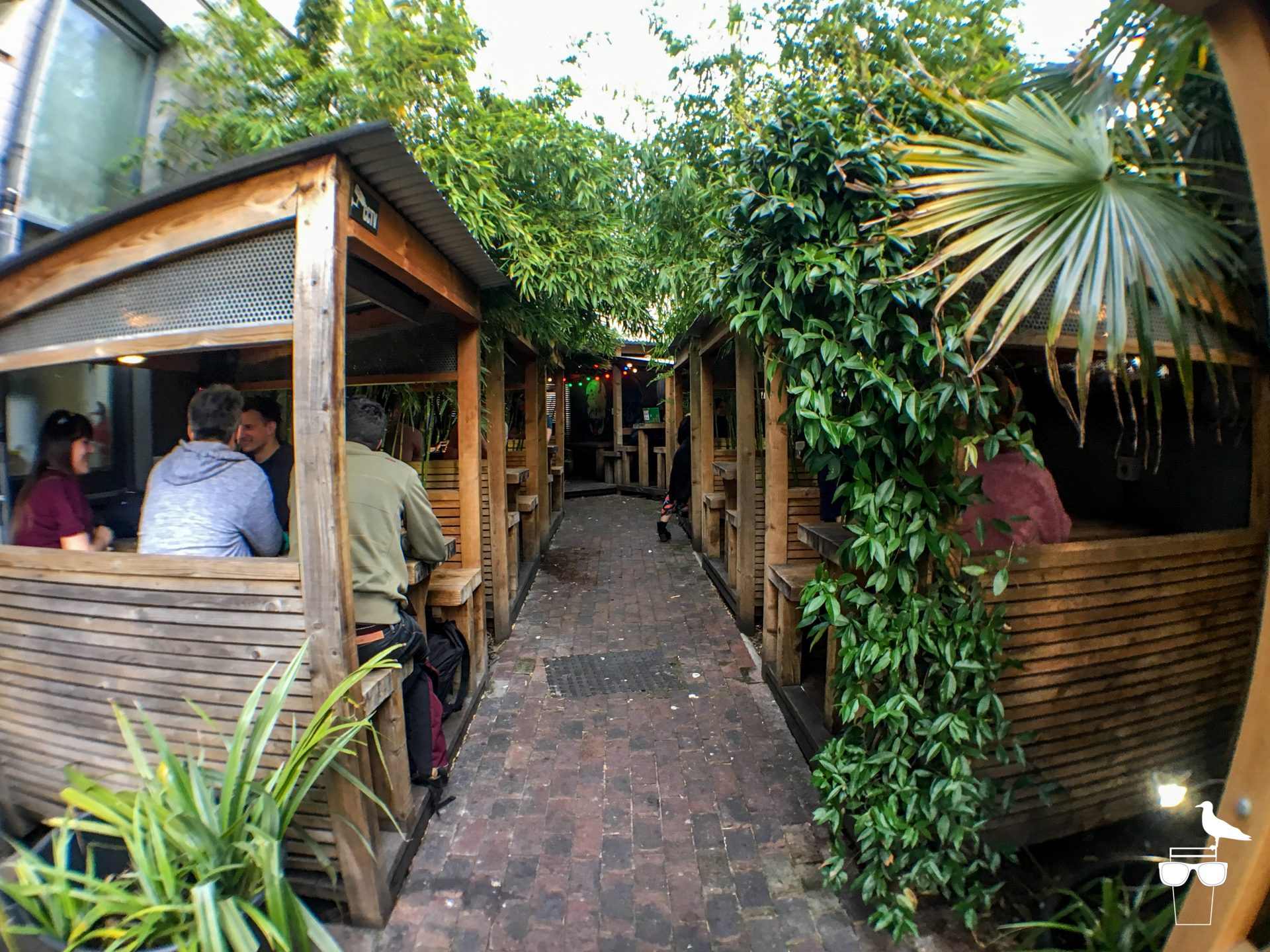the hare and hounds pub brighton garden booths and plants