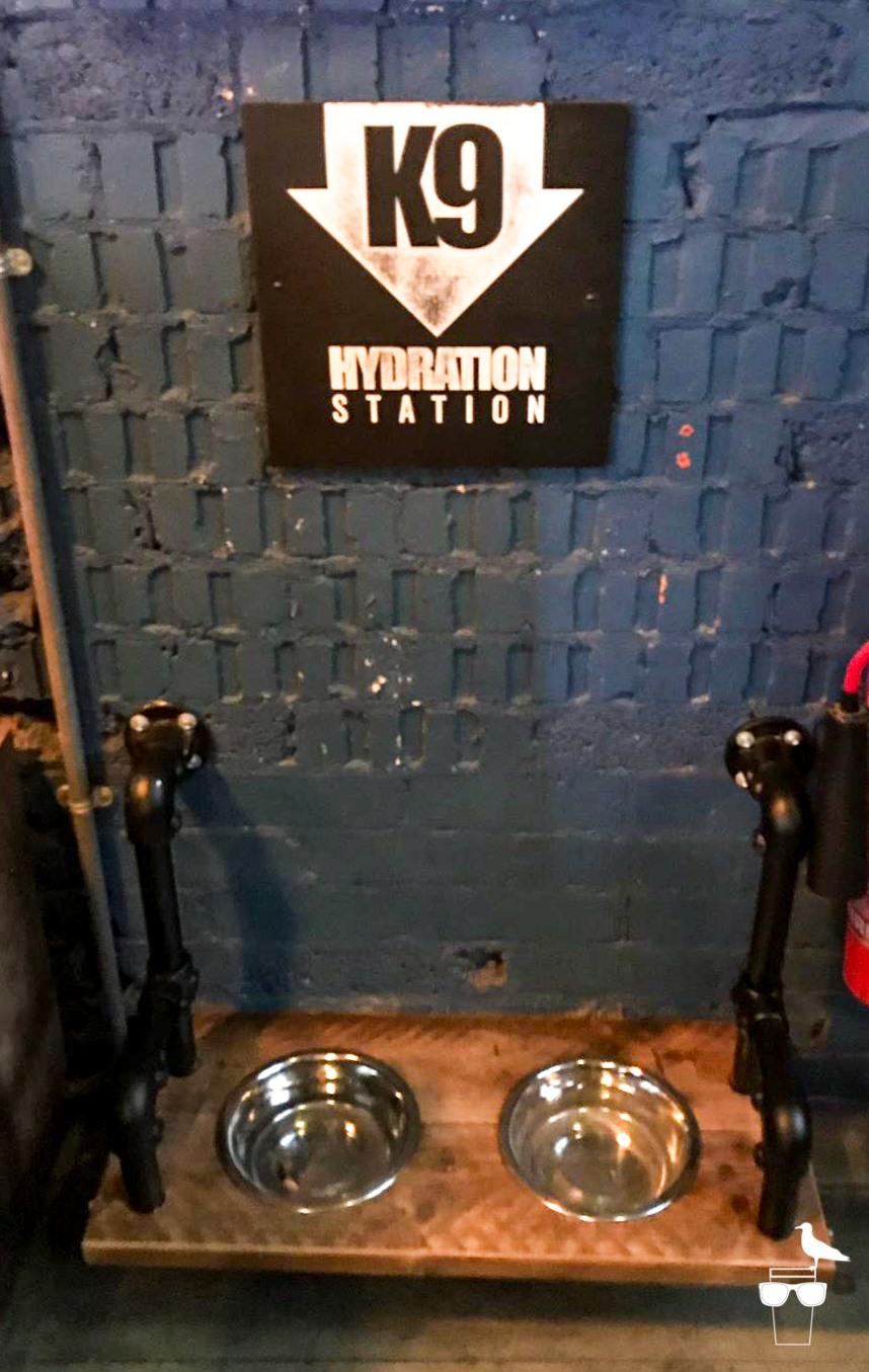 brewdog brighton k9 hydration station