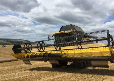 long-man-brewery-harvester-in-barley-field