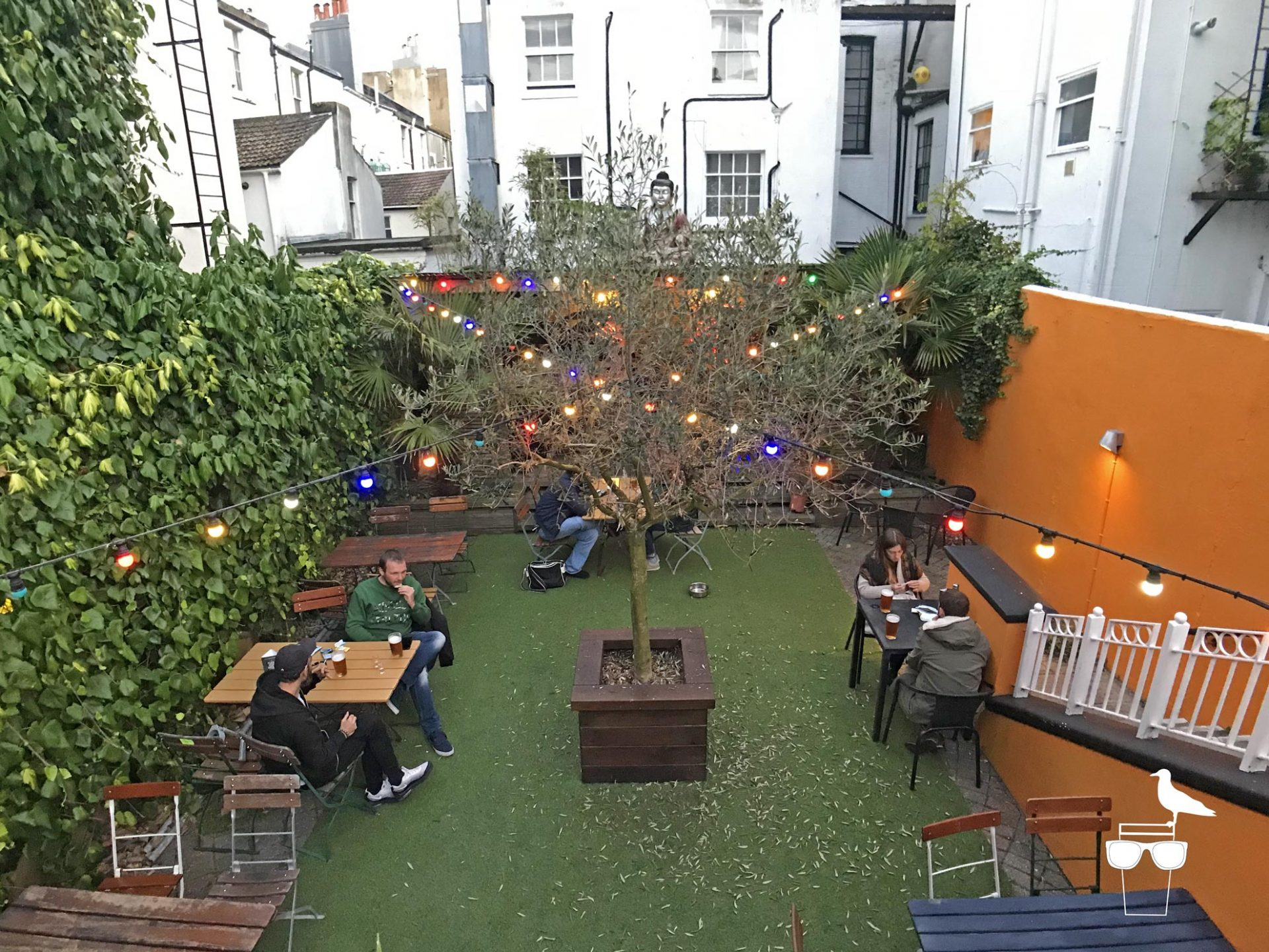 sidewinder-brighton-rear-garden-wide-view