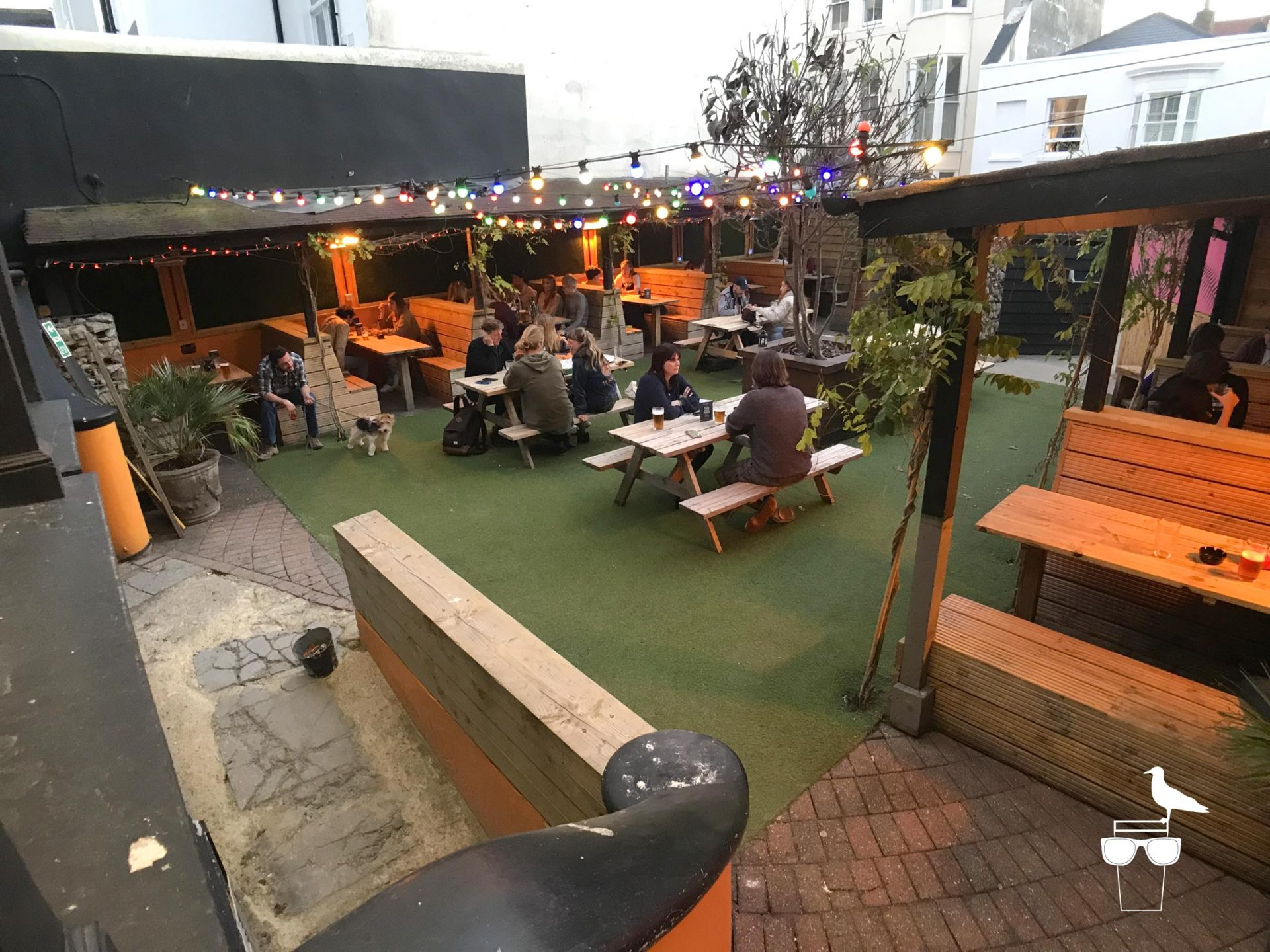 sidewinder-brighton-side-garden-wide-view